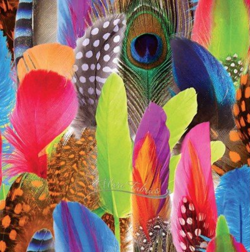 X60 Sandro Feathers STOF FRANCE