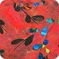 Venice AQSD-19720-3 Red
