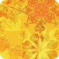 Venice AQSD-19722-5 Yellow