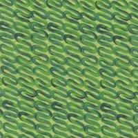 Wonderland Green Squiggles 1399-66