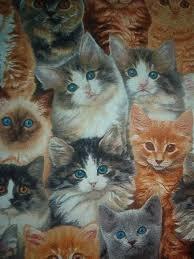 adorable pets cat 3802 multi