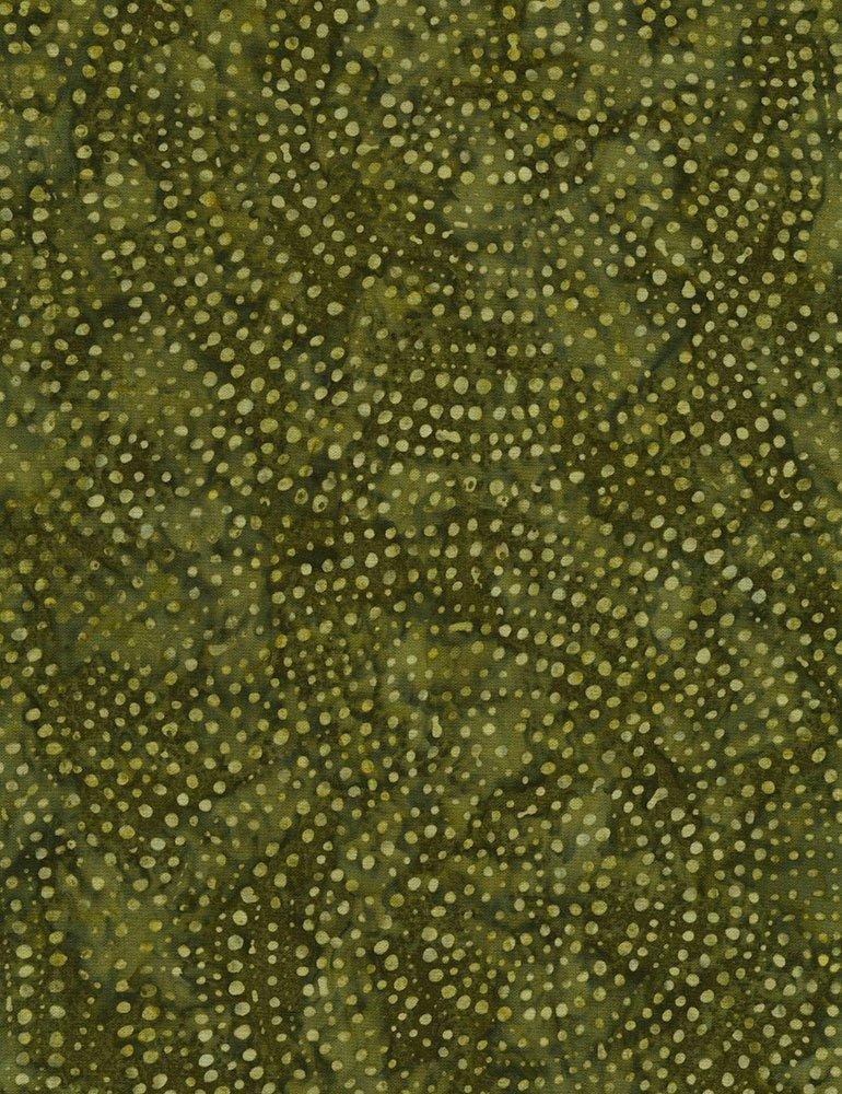 Tonga-B2336 Olive