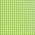 1/8 Bright Lime Gingham Check