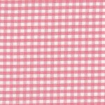 1/8 Coral Gingham Check