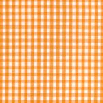 1/8 Tangerine Gingham Check