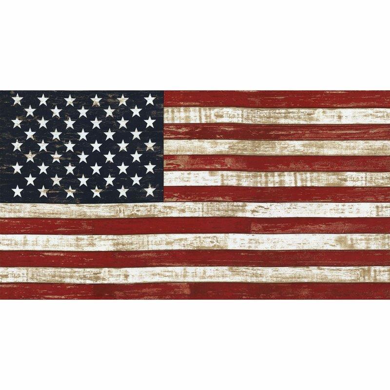 American Flag Panel