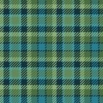 Primo Plaid Flannel Blue/Green