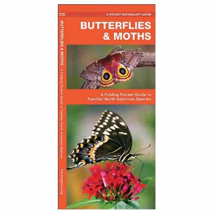 Butterflies & Moths - James Kavanagh