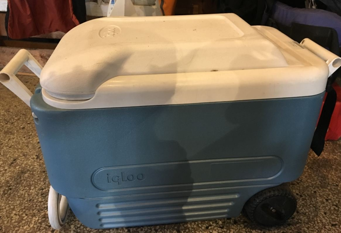 Consign - Igloo Cooler