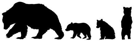 Bear Paws Refill Pack: Brown WDA1601RBR