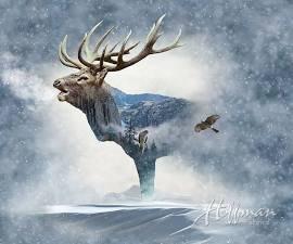 Call of the Wild Fog  P4397 483 (Elk Panel 43 X 31)