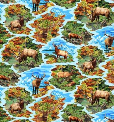Autumn Blaze - Scenic Elk Print