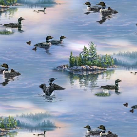 Loons - Scenic Print