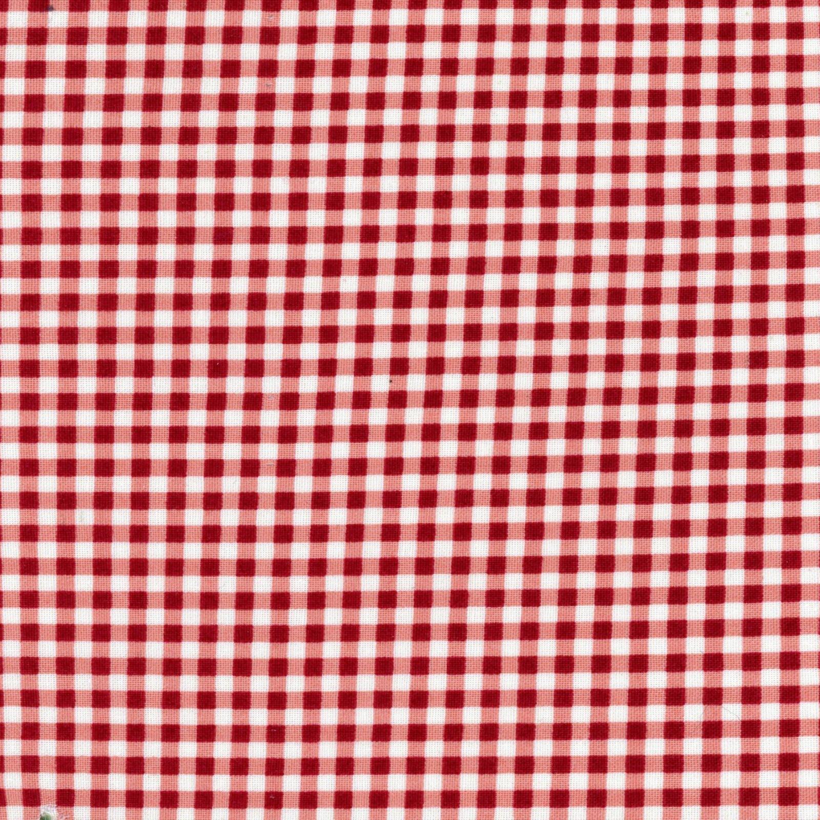 Beautiful Basics - Gingham Plaid - Red