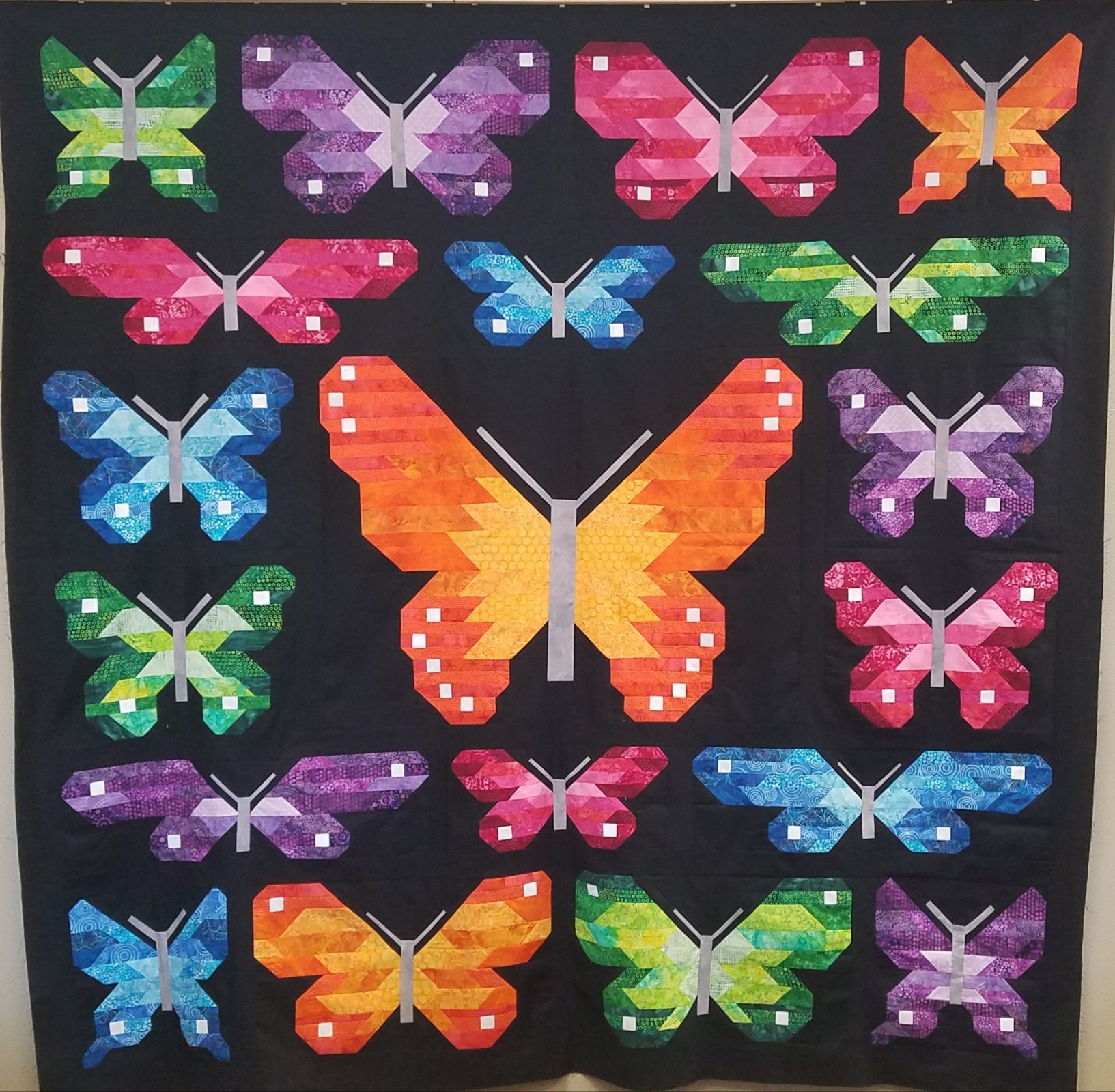 Lepidoptera Kit