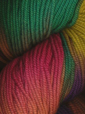 Huasco Worsted - Col 504 Araucania Yarns