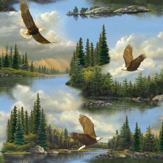 Majestic Eagles  Scenic Flight