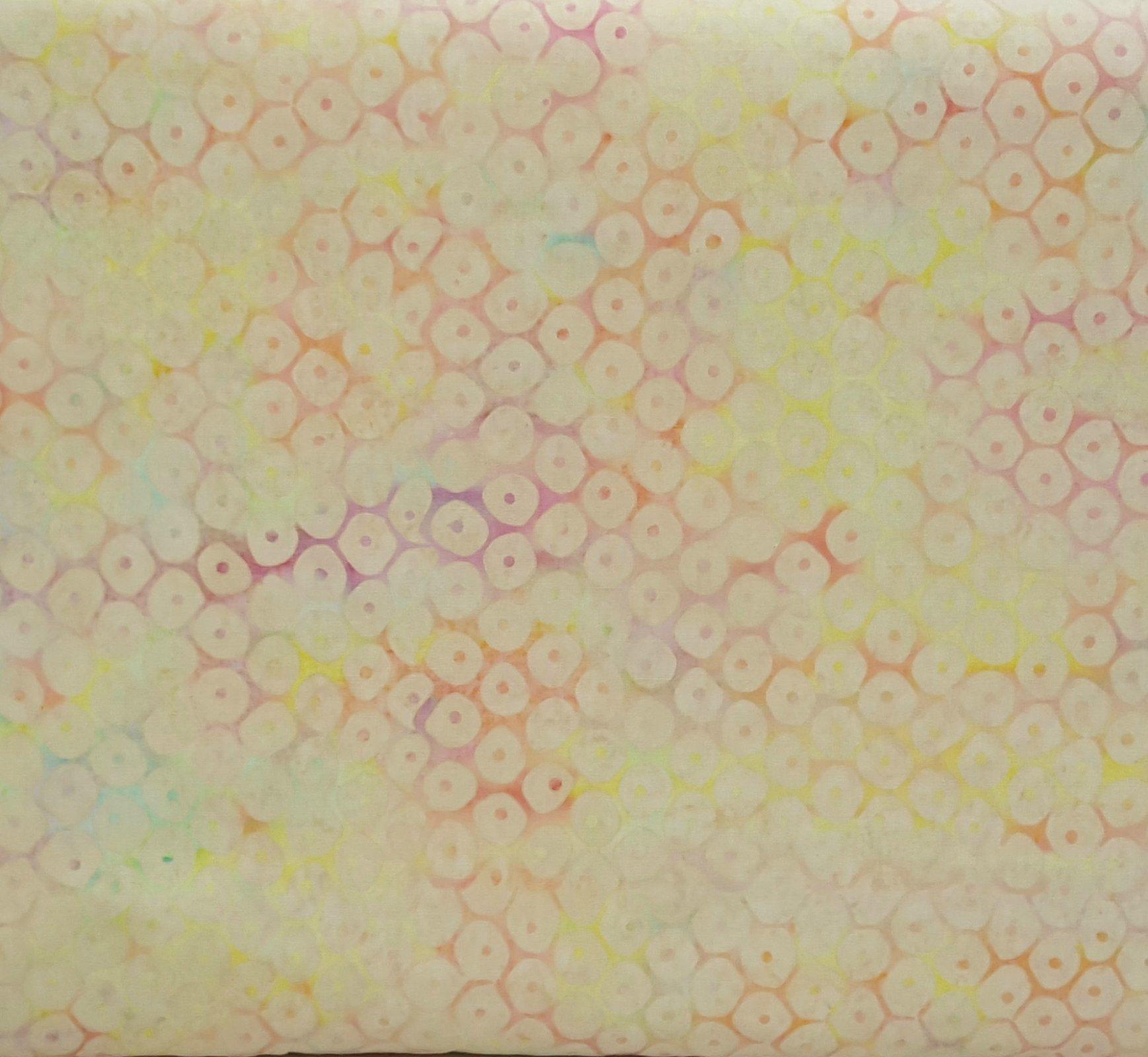 2415 Riviera Rhythm - pink/yellow