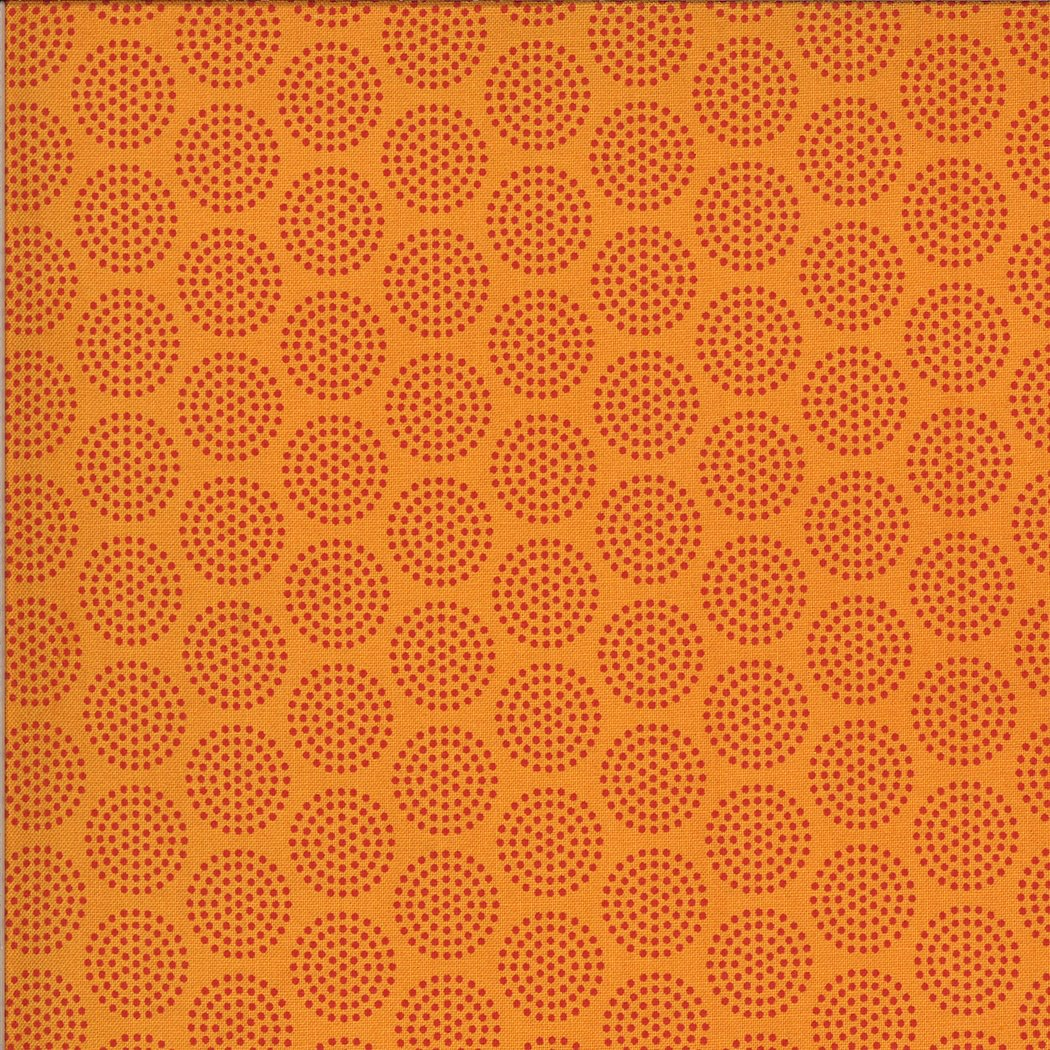 5806 14 ANIMAL CRACKERS--Tangerine