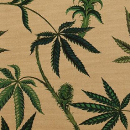 cannabis-sativa_h8325cr  home dec weight