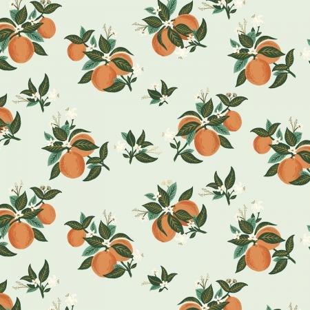 RP301-OR4M Citrus_blossom_orange