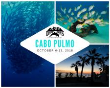 Cabo Pulmo 2018