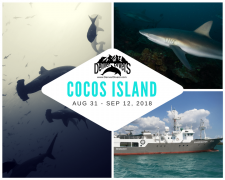 Cocos Island Liveaboard 2018
