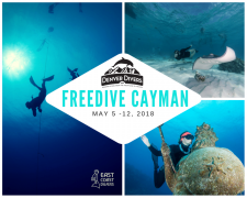 Freedive Grand Cayman 2018