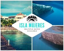Isla Mujeres Whale Shark Trip 2018