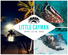 Little Cayman 2018