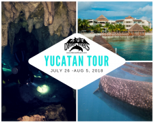 Tour of the Yucatan 2018