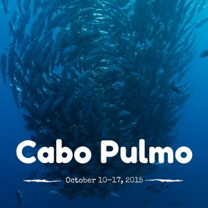 Cabo Pulmo October 10-17, 2015