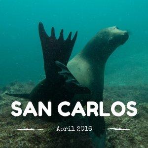 San Carlos April 2016