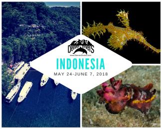 Indonesia Sulawesi 2018
