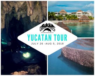 Tour of the Yucatan
