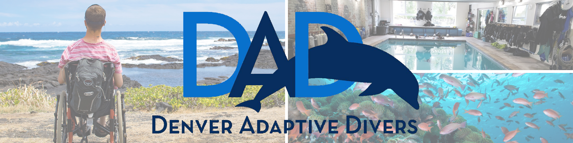 Denver Adaptive Divers