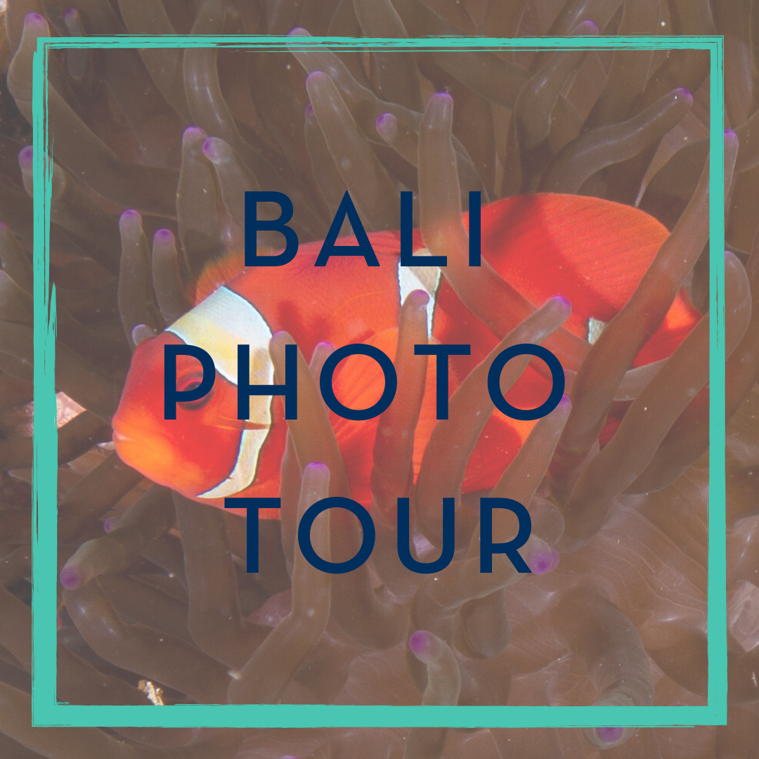 Bali Photo Tour