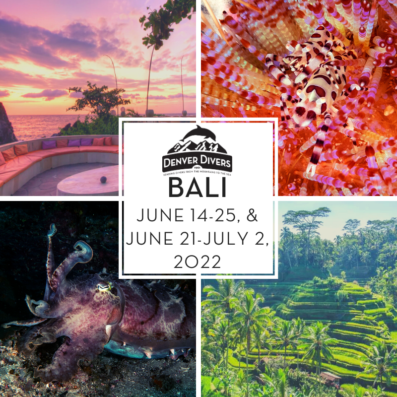 Bali Indonesia 2022