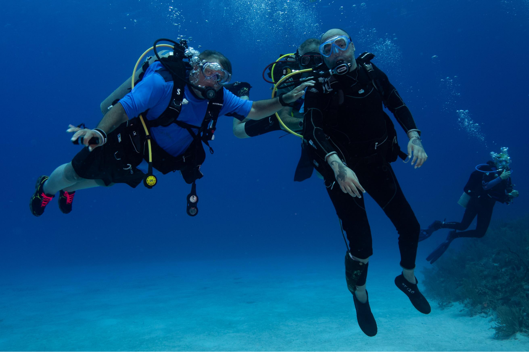 Adaptive Diver Image