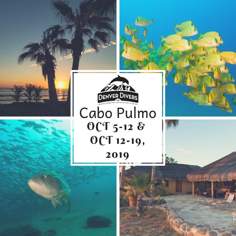 Cabo Pulmo Eco-Adventure 2019