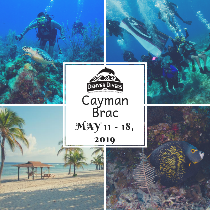 Cayman Brac DAD Bash 2019