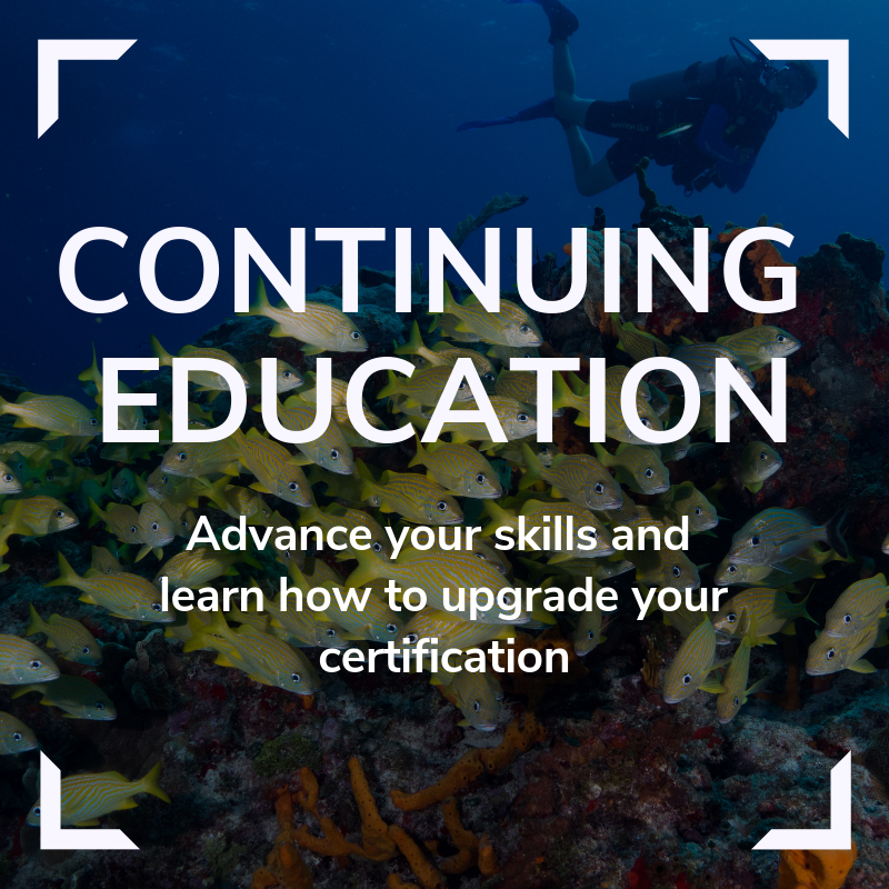 Continuing Education Link
