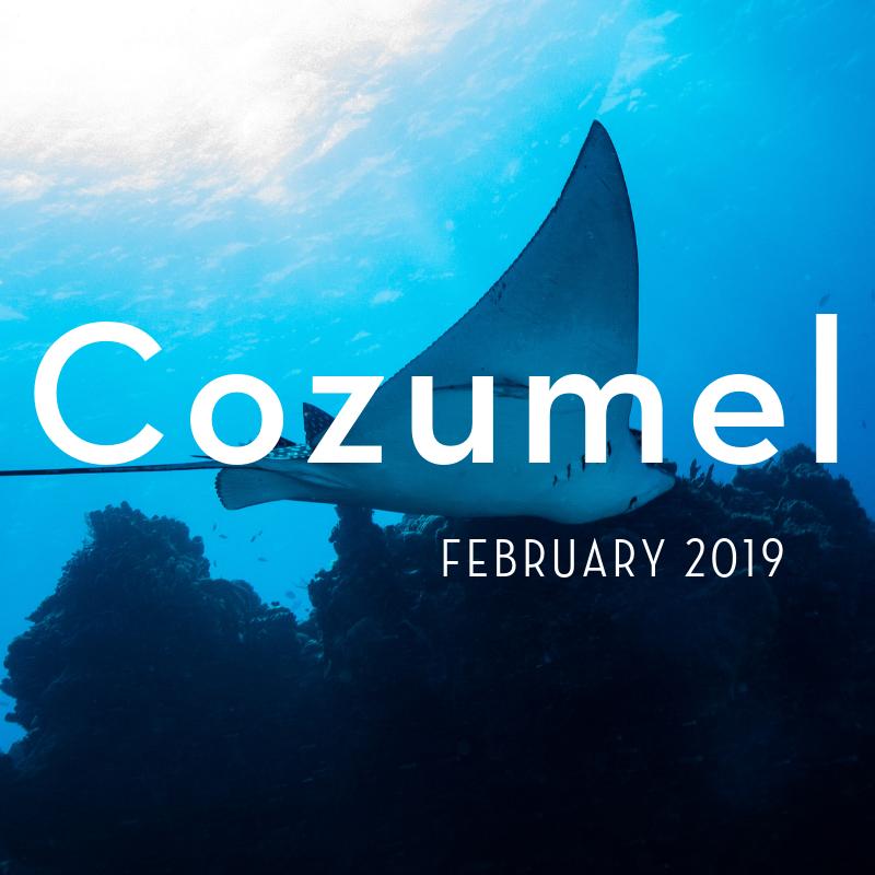 Cozumel 2019