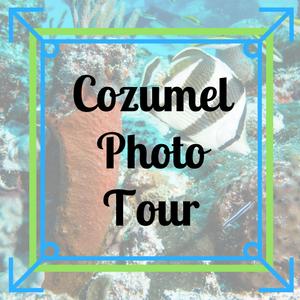 Cozumel Photo Tour