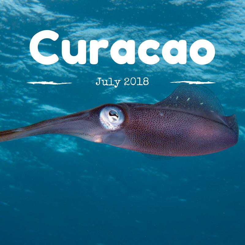 Curacao Generation Ocean 2018