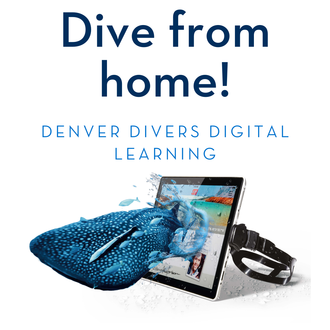 Denver Divers Digital Learning