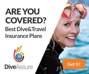 Dive Assure Insurance Link