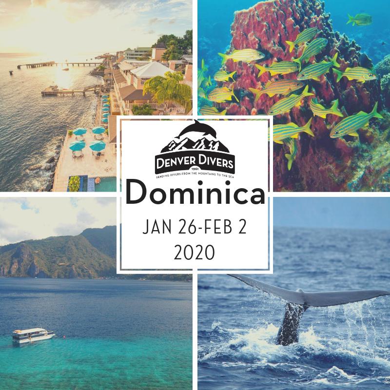Dominica 2020