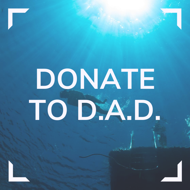 Donate to DAD Link