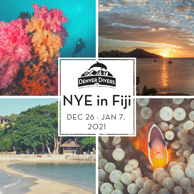 Fiji for NYE